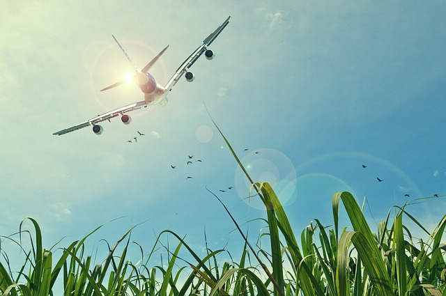 All You Need to Know About Flight Delay Compensation (1)